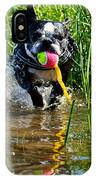 Shoreline Conditioning IPhone Case