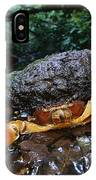 Short-tailed Crab Potamocarcinus Sp IPhone Case
