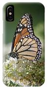 Side Profile Of A Monarch IPhone Case