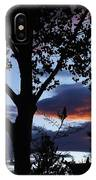 Silohuette Of The Southwest IPhone Case