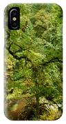 Silver Falls Rainforest IPhone Case