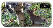 Silver Tabby And Wild Rabbit IPhone Case