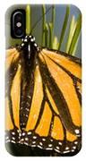Single Monarch Butterfly IPhone Case