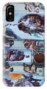 Sistine Chapel Ceiling IPhone Case