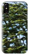 Slanted Branches IPhone Case