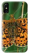 Small Pearl-bordered Fritillary IPhone Case