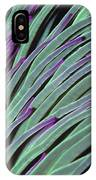 Snakelocks Anemone Anemonia Viridis IPhone Case