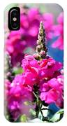 Snapdragon Sunshine IPhone Case