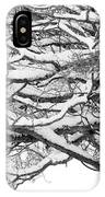 Snow Covered Tree Branches IPhone Case