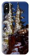 Snow Tipped Trees  IPhone Case