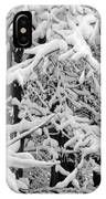 Snow Trees IPhone Case