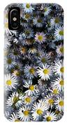 So Many Daisies IPhone Case
