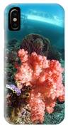 Soft Coral And Sea Squirts IPhone Case