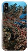 Soft Coral Reef Seascape, Indonesia IPhone Case