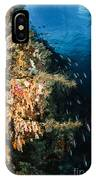 Soft Coral Seascape And Rainbow IPhone Case