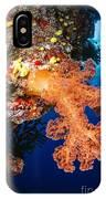 Soft Coral Seascape, Fiji IPhone Case