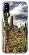 Sonoran Desert II IPhone Case