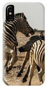 Sour Stripes 3 IPhone Case