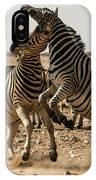 Sour Stripes IPhone Case