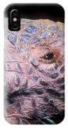 Southern Naked-tail Armadillo IPhone Case