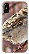 Sparrow II IPhone Case
