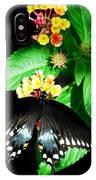 Spice Bush Swallowtail  IPhone Case