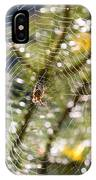Spider On Web IPhone Case