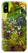 Spider Webs At The Farm IPhone Case