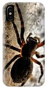 Spiders Home IPhone Case