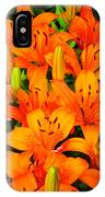 Spiritual Bouquets At St. Francis Cathedral IPhone Case