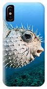 Spotted Porcupinefish IPhone Case