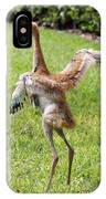 Spread Your Wings And Try To Fly IPhone Case