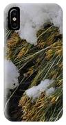 Spring Arrives IPhone X Case