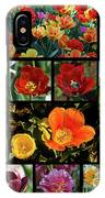 Spring Flowers 2 IPhone Case