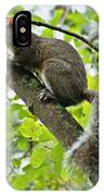 Squirrel IIi IPhone Case
