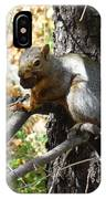 Squirrling Away IPhone Case