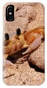 St. Lucia Crab On Beach IPhone Case