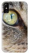 Staring Cat IPhone Case