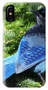 Stellers Jay 2 IPhone Case