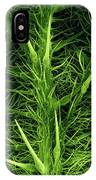Stinging Hairs On A Nettle Leaf IPhone Case