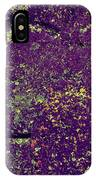 Stone Face At Hossa With Stone Age Paintings IPhone Case
