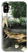Storm Damage IPhone Case