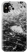 Streched Trees In Black And White IPhone Case