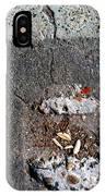 Streets Of Coronado Island  7 IPhone Case