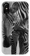 Stripes - Zebra IPhone Case
