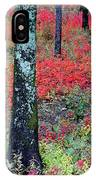 Sumac Slope And Lichen Covered Tree IPhone Case