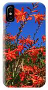 Montbretia, Summer Wildflowers IPhone Case