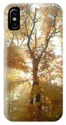 Sun Breaking Through Trees IPhone Case