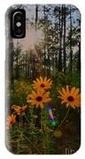Sunburst On Sunflowers IPhone Case