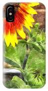 Sunflower 3 Sf3wc IPhone Case